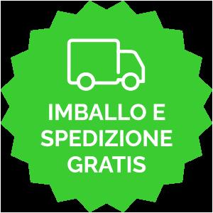 Imballo e spedizione gratis icona verde